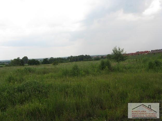 Morizon WP ogłoszenia   Działka na sprzedaż, Żory, 64506 m²   2861