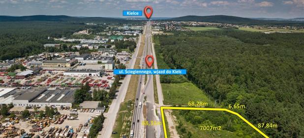 Działka na sprzedaż 7007 m² Kielecki Morawica Bilcza - zdjęcie 1