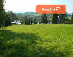 Morizon WP ogłoszenia | Działka na sprzedaż, Skawa, 2800 m² | 2513