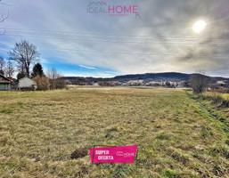 Morizon WP ogłoszenia   Działka na sprzedaż, Lutcza, 5000 m²   0822