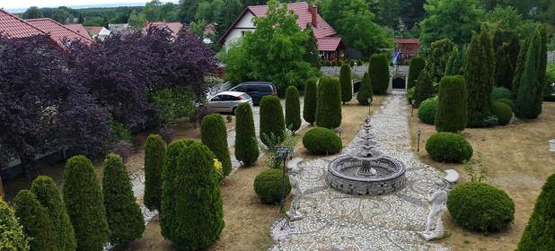 Działka na sprzedaż 900 m² Zielonogórski (pow.) Świdnica (gm.) Wilkanowo Akacjowa - zdjęcie 3