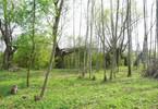 Morizon WP ogłoszenia   Działka na sprzedaż, Rajszew, 3000 m²   7863