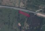 Morizon WP ogłoszenia | Działka na sprzedaż, Niecenia, 11500 m² | 1074