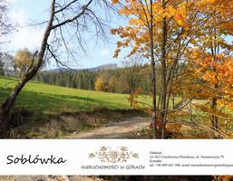 Morizon WP ogłoszenia | Działka na sprzedaż, Soblówka, 1200 m² | 5710