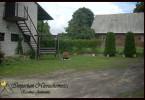 Morizon WP ogłoszenia   Dom na sprzedaż, Murowana Goślina, 2200 m²   1798