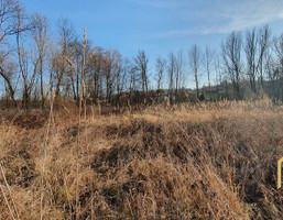 Morizon WP ogłoszenia | Działka na sprzedaż, Chmielnik, 4300 m² | 3833