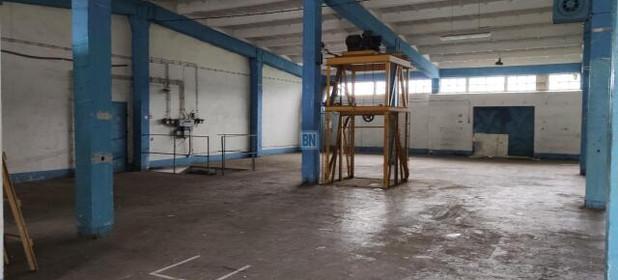 Inny obiekt do wynajęcia 430 m² Gliwice - zdjęcie 1