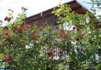 Morizon WP ogłoszenia | Dom na sprzedaż, Piastów, 350 m² | 6922