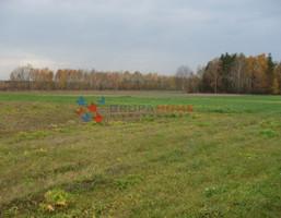 Morizon WP ogłoszenia | Działka na sprzedaż, Grochowa, 2500 m² | 7021