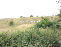 Morizon WP ogłoszenia | Działka na sprzedaż, Prandocin-Iły, 5000 m² | 0751