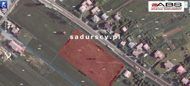 Działka do wynajęcia 10256 m² Krakowski Jerzmanowice-Przeginia Jerzmanowice al. Jana III Sobieskiego - zdjęcie 1