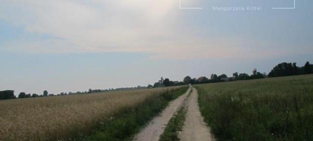 Działka na sprzedaż 3800 m² Płoński Załuski Nowe Wrońska - zdjęcie 3