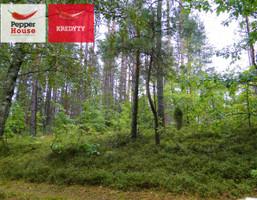 Morizon WP ogłoszenia   Działka na sprzedaż, Skorzewo, 3008 m²   6805