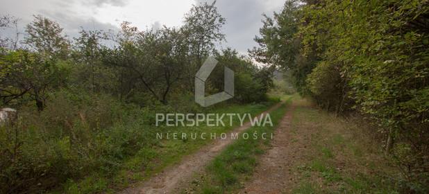 Działka do wynajęcia 13500 m² Zielona Góra Nowy Kisielin - zdjęcie 3