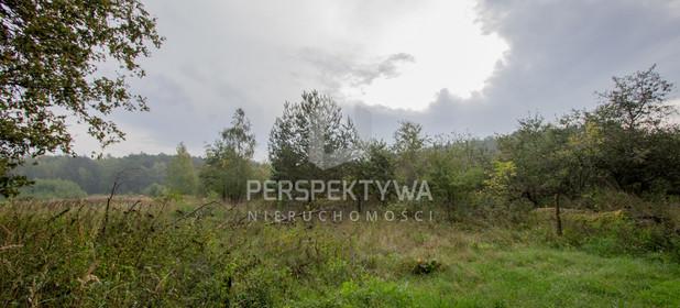 Działka do wynajęcia 13500 m² Zielona Góra Nowy Kisielin - zdjęcie 2