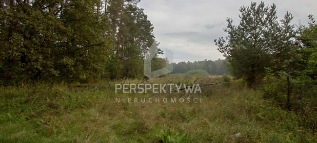 Działka do wynajęcia 13500 m² Zielona Góra Nowy Kisielin - zdjęcie 1