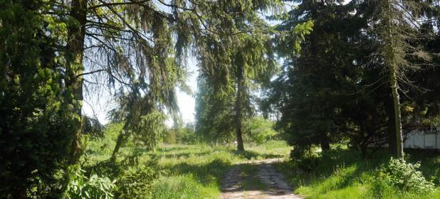 Działka na sprzedaż 5000 m² Piaseczyński (Pow.) Konstancin-Jeziorna (Gm.) Habdzin - zdjęcie 2