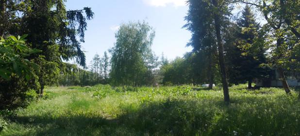 Działka na sprzedaż 5000 m² Piaseczyński (Pow.) Konstancin-Jeziorna (Gm.) Habdzin - zdjęcie 1