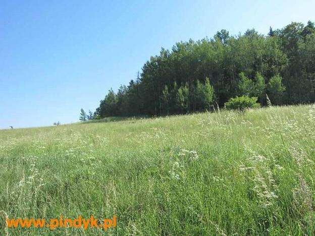 Morizon WP ogłoszenia | Działka na sprzedaż, Jelenia Góra Maciejowa, 2800 m² | 0252