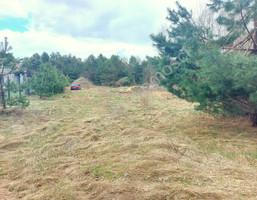 Morizon WP ogłoszenia | Działka na sprzedaż, Ludwinów, 1419 m² | 2541