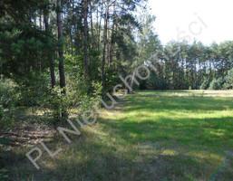 Morizon WP ogłoszenia | Działka na sprzedaż, Cyganka, 2100 m² | 8550