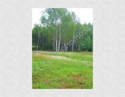 Morizon WP ogłoszenia | Działka na sprzedaż, Wielgolas Duchnowski, 7196 m² | 8915