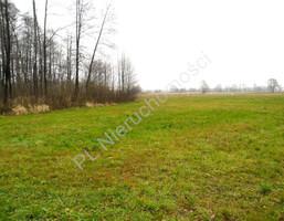 Morizon WP ogłoszenia | Działka na sprzedaż, Nowodwór, 10400 m² | 8384