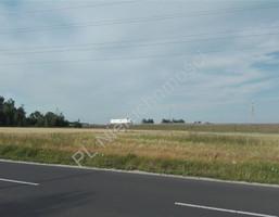 Morizon WP ogłoszenia | Działka na sprzedaż, Sokołów, 5406 m² | 8193