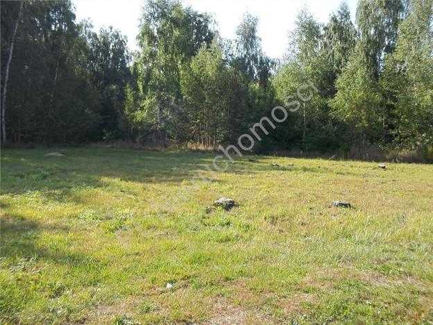 Morizon WP ogłoszenia | Działka na sprzedaż, Domaniew, 1326 m² | 5885