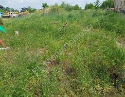 Morizon WP ogłoszenia | Działka na sprzedaż, Domaniewek, 8300 m² | 9667