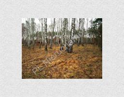 Morizon WP ogłoszenia | Działka na sprzedaż, Stefanowo, 1900 m² | 4682