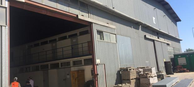 Fabryka, zakład na sprzedaż 14603 m² Kozienicki (Pow.) Kozienice (Gm.) Świerże Górne - zdjęcie 2