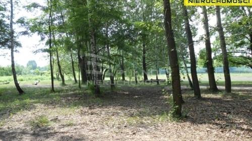 Działka na sprzedaż 5715 m² Sosnowiec Niwka - zdjęcie 2