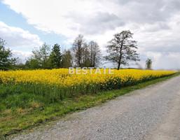 Morizon WP ogłoszenia | Działka na sprzedaż, Pawęzów, 1100 m² | 6227