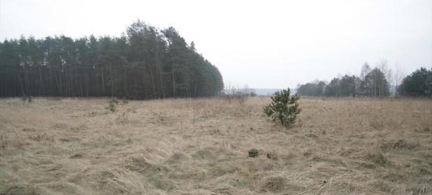 Działka na sprzedaż 3900 m² Opolski Ozimek Grodziec czestochowska - zdjęcie 2