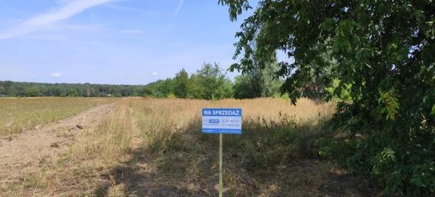 Działka na sprzedaż 11000 m² Opolski Chrząstowice Niwki Wiejska - zdjęcie 3