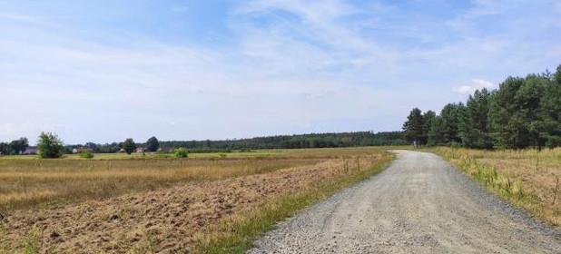 Działka na sprzedaż 5300 m² Opolski Chrząstowice Niwki - zdjęcie 3