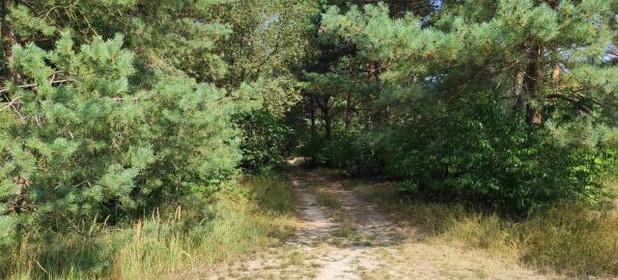 Działka na sprzedaż 5300 m² Opolski Chrząstowice Niwki - zdjęcie 2