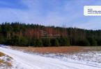 Morizon WP ogłoszenia | Działka na sprzedaż, Żdżary, 36600 m² | 4119