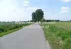 Morizon WP ogłoszenia | Działka na sprzedaż, Witoldów, 3000 m² | 0313