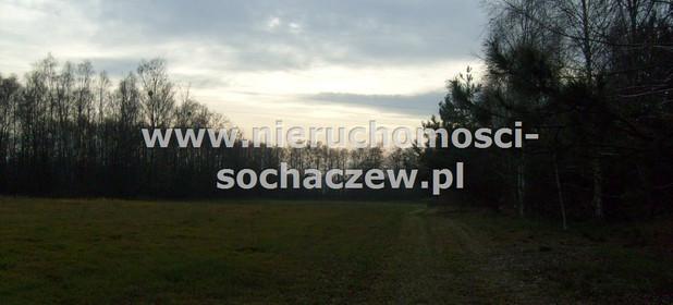 Działka na sprzedaż 17021 m² Warszawski Zachodni Kampinos Kirsztajnów - zdjęcie 1