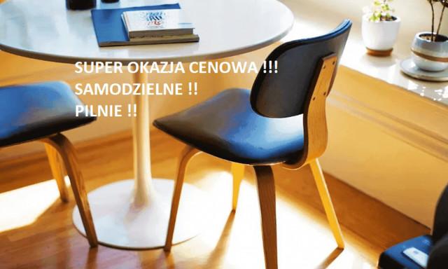 Mieszkanie do wynajęcia <span>Wrocław, Śródmieście, Biskupin, ul Sempołowskiej</span>