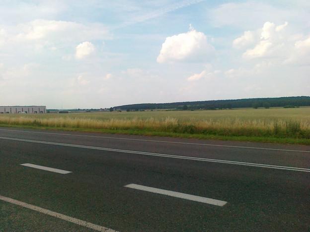 Morizon WP ogłoszenia | Działka na sprzedaż, Tarnowo Podgórne, 70000 m² | 3402