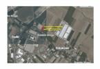 Morizon WP ogłoszenia | Działka na sprzedaż, Robakowo Żernicka, 10057 m² | 2174