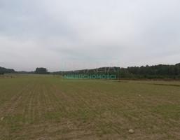 Morizon WP ogłoszenia   Działka na sprzedaż, Krze Duże, 34300 m²   7759