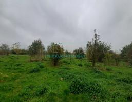 Morizon WP ogłoszenia | Działka na sprzedaż, Brwinów, 15722 m² | 7815