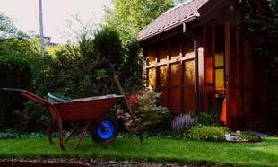 Jesień w ogrodzie – 16 prac ogrodowych, o których musisz pamiętać