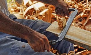 Drewno w domu i ogrodzie – wszystko o prawidłowym wykorzystaniu, użytkowaniu i konserwacji