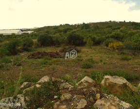Działka do wynajęcia, Portugalia Alcabideche, 3000 m²