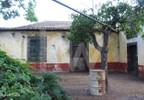 Działka na sprzedaż, Portugalia Câmara De Lobos, 12445 m² | Morizon.pl | 3113 nr4